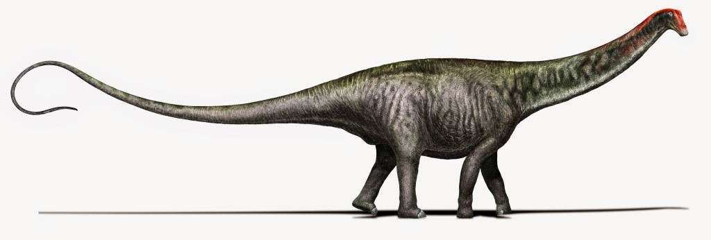 "Life restoration: ""Brontosaurus as researchers see it today – with a Diplodocus-like head"" Credit: Davide Bonadonna, Milan, Italy. Creative commons license CC- BY NC SA."