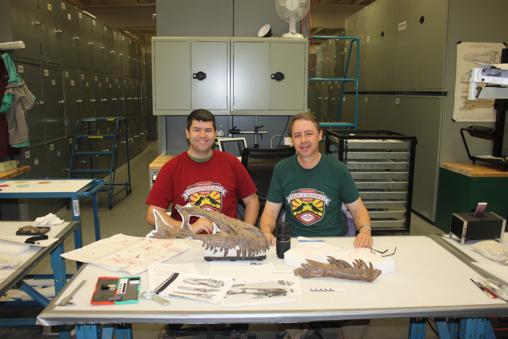 Coauthors David Hone (left, red) and Darren Tanke (right, green) in the Royal Tyrrell Museum with the skull of the tyrannosaur.