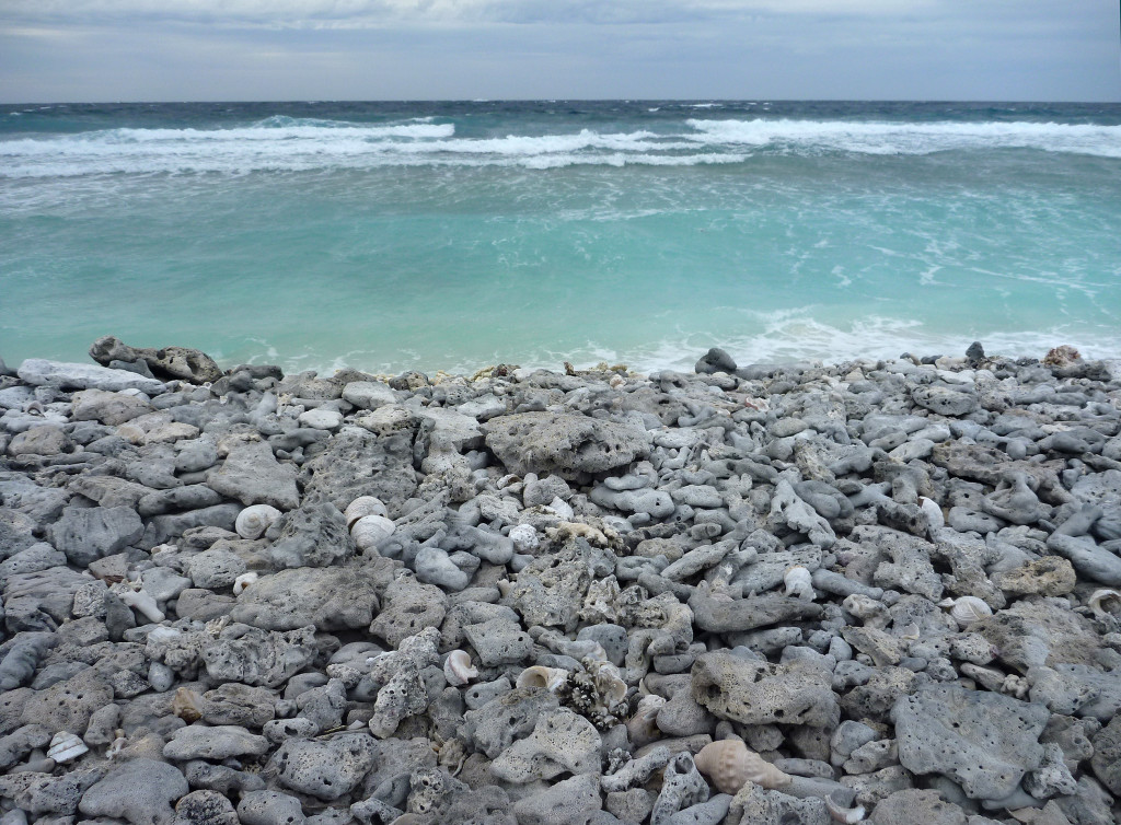 Pelsaert Island, Houtman Abrolhos Islands