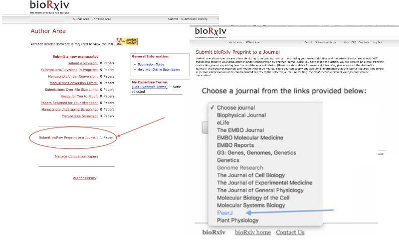 Authors can now directly submi...